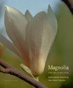 Magnolia av John Lennart Söderberg och Ann-Marie Åsheden