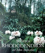 Sofieros Rhododendron