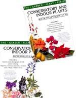 Conservatory & Indoor Plants