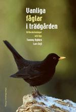 Vanliga fåglar i trädgården av Tommy Dybbro / Lars Gejl