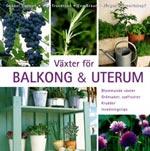 Växter för balkong och uterum