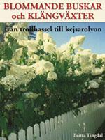 Blommande buskar och klängväxter