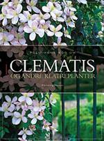 Clematis og andre klatreplanter