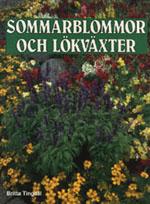 Sommarblommor och lökväxter