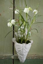 Kungsängslilja Fritillaria meleagris 'Alba'