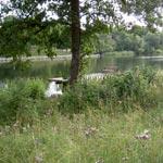 En favoritoas på Djurgården i Stockholm…där vardagsflanerare kan stanna till för vila, läsa picknicka eller t.o.m. fiska.