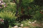 Man kan sedan forma till dammen med stenar och sand.