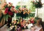 Stora eller små blommor till Mors Dag. En korg arrangerad med prärieklocka, en bukett ranunkler eller en vas med alströmeria och grön s.k. paraplyfern.