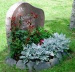 Mörkröda rosor och låga nejlikor samt silverek i kanten.
