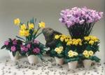 Påskharen låter sig väl smaka av påskbordets blommor. På bilden ser vi krysantemum, vårprimula, lyckliga Lotta och påskliljor.