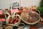 Knäcker nötter både bildligt och handgripligt gör man kanske under julhelgerna