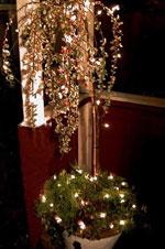 Julträd med ljus