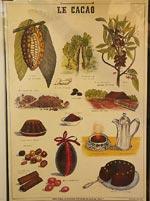 Tjusig fransk kakaoaffish
