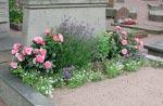 Långblommare, innehåller narcisslökar i botten, rosor, kärleksört, lavendel, lobelia och strandkrassing.