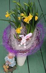Lilla Kanin gömmer sig!