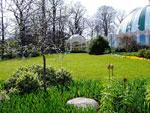 Lisebergsteatern och planteringar