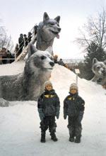 Vackraste vinterparken med tre vargar i is.