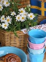 Margerit i sällskap med svenska flaggan