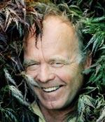 Skaparen Folke Mattsson i flikbladig japanlönn,