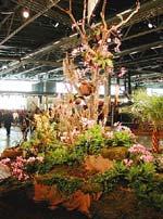 Orkidehuset