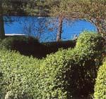 Trädgårdens gröna ram