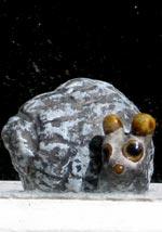 En sötnos ur samlingen i förrådsfönstret iakttar sorgset levande artfränders öden.