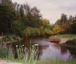 Allt var frid och fröjd och fiskarna simmade omkring och ynglade av sig.