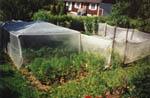 Ett tält av Agrocover/Microclima.