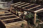Två enkla bänkar/växthus som är byggda av kasserade fönster.