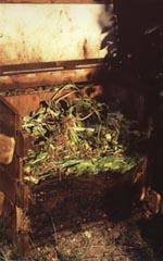 Mullbanken är en enkel konstruktion i trä med ståltrådsgaller i botten.