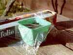 Täck krukorna med gladpack och ställ dem ljust.