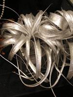 Mera på det silvriga temat: två fyrkantiga glaskrukor med varsin silversprejad Tillandsia i.