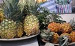 Ananas och minianannas