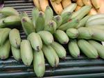 Äpplebanan, Musa acuminata-sort
