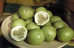 Äpplegrenadill, Passiflora maliformis