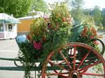 Årets blomstervagn