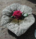 Betonglöv gjuten med hjälp av rabarberblad