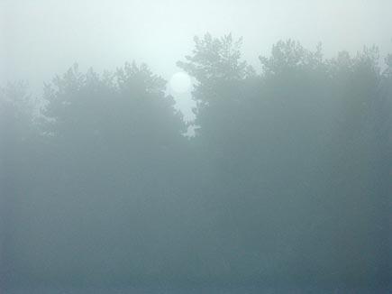 Dimman får omgivningen att se helt annorlunda ut, detaljerna suddas ut och blir mjuka.