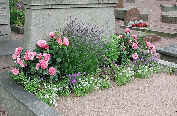 blommor till gravplats sommar