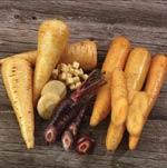 Blålila turkiska morötter, den vita sorten 'Kuttiger' och den gula 'Pfälzer'
