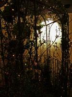 Fasadbelysning och ljusslinga i rosenportal