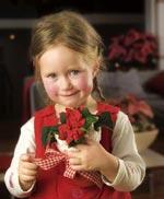 Helt oemotståndlig är den lilla flickan som med en mini-julstjärna med veckade blad önskar en fridfull jul.
