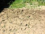 Många tycker det ser snyggt ut om man gräver landet.