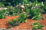 Göteborgs Botans 'grusrabatt' sommaren -99. Lägg märke till det röda gruset mellan plantorna. Kompositionen skall se ut som om växterna hade hamnat där av en slump.