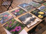 Kandidaterna till Årets Trädgårdsbok