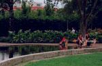Kyl med träd