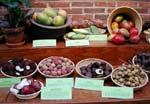 På denna bild ses en grupp frukter som kommer från Ostasien. Litchi och longan från Kina, rambutan och salak från Malaysia och vattenäpple från Indonesien.