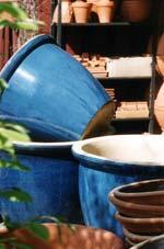 Gör rent i alla urnor och patiokrukor om du inte gjorde det redan i höstas.