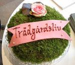 Mosstårta, LJ Design