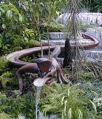 Nyzeeländsk trädgård vann guld på Chelsea Flower Show